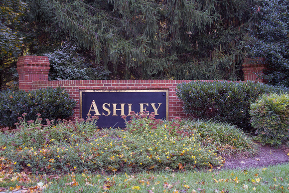 The Ashley in Davidsonville #2